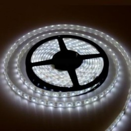 strip led blanc froid 6000k