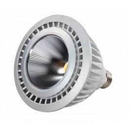 PAR38 13W LED