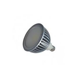 PAR38 20W LED