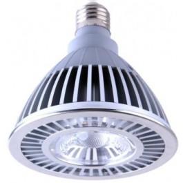 PAR-30 LED 16W