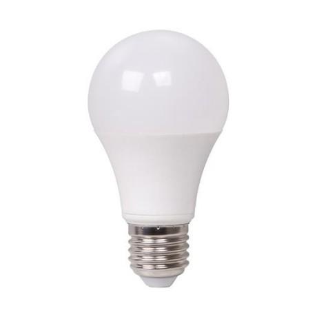 Ampoule E27 PROFESSIONNELLE 12W